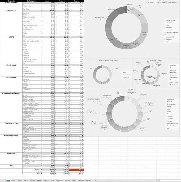 Excel lentelė, asmeniniai finansai